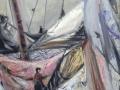 Segel bergen, 2013, Öl auf Leinwand, 60x45 cm